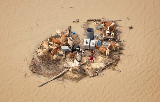 pakistan.floods