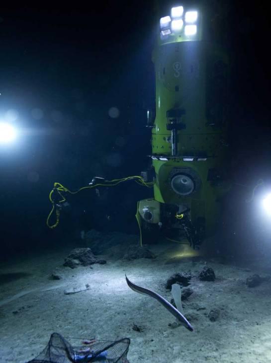 deepsea-challenger.atthebottom